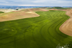 Palouse-DJI_0013-2-Edit-2