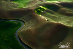 Palouse-_DSF5393-Edit-2
