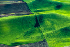 Palouse-_DSF7576-Edit-2
