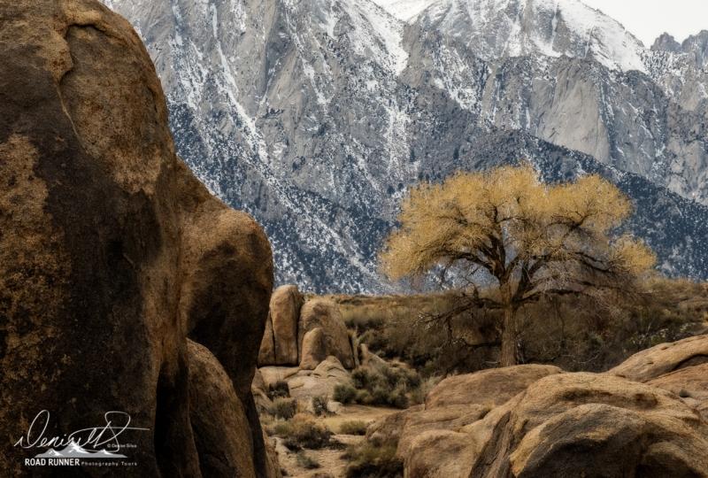 Death Valley-_DSF7595-Edit
