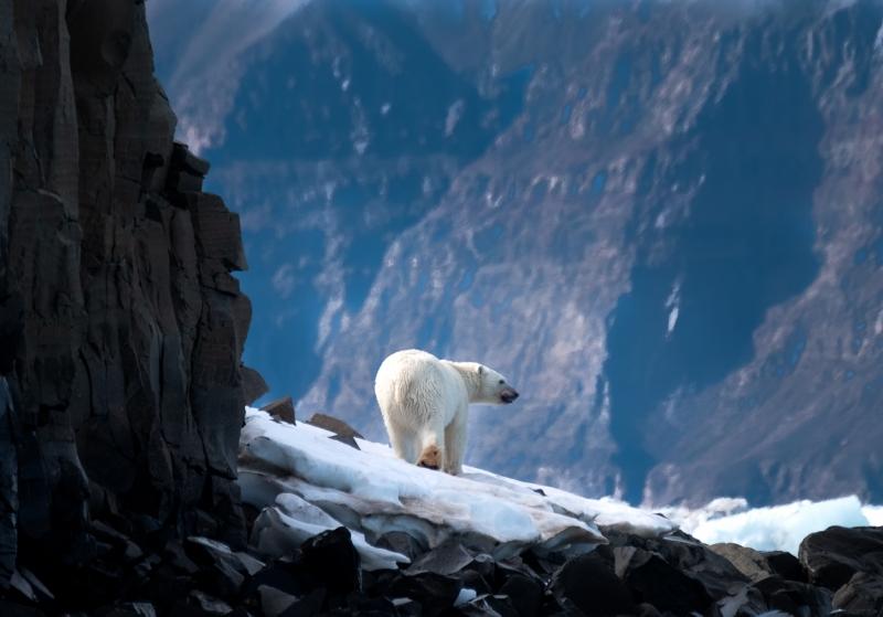 Greenland-_H1R4919-Edit