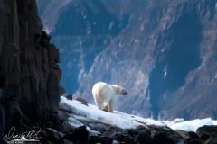 Greenland-_H1R4919-Edit-2