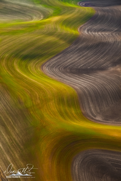 Palouse-_DSF5377-Edit