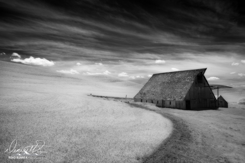Palouse-_DSF7168-Edit