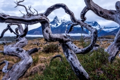 Patagonia-Untitled_HDR2-4