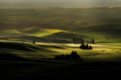 Palouse-_XT25810-Edit-2