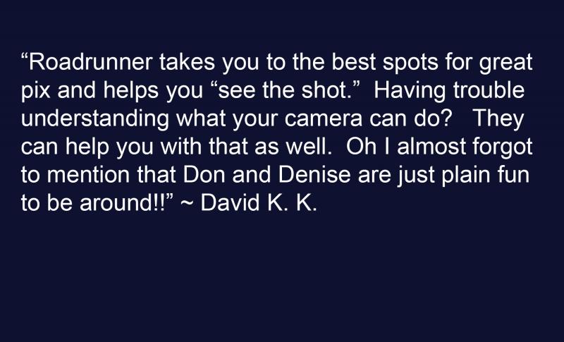 David K Testimonial SRBG