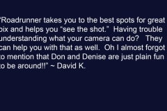 David K Testimonial