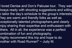 Judy M Testimonial