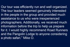 Mike-O-Testimonial