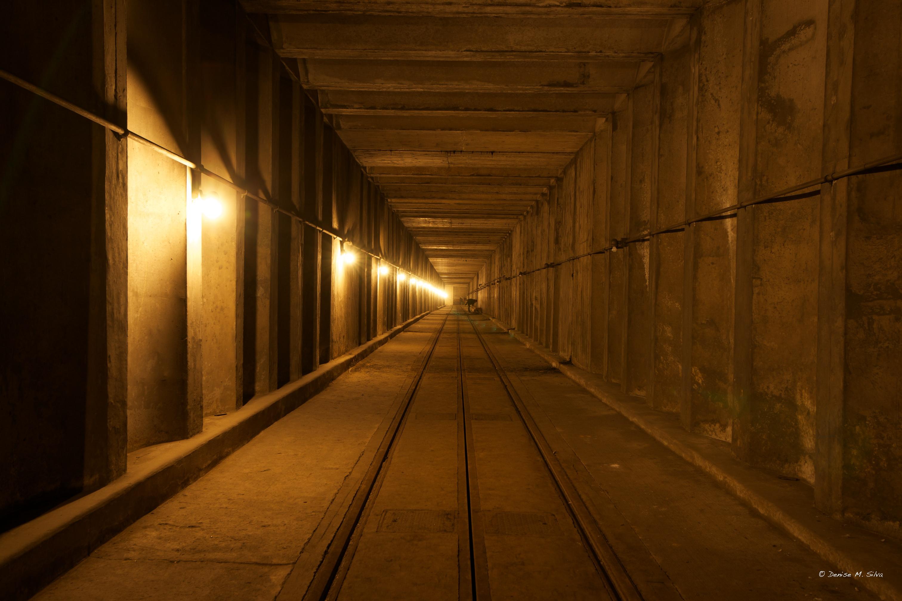 DC-Dupont-Underground-_DSC3212-2012-02-19.jpg